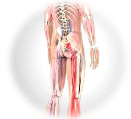 Biểu hiện triệu chứng của bệnh lý hẹp ống sống thắt lưng rất đa dạng